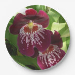 Maroon Orchids II Elegant Floral Paper Plate