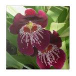 Maroon Orchids II Elegant Floral Tile