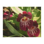 Maroon Orchids II Wood Wall Art