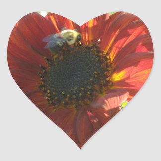 Maroon Sunflower Bee Heart Sticker