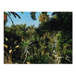 Marrakesh, jardines de Majorelle, Marruecos Postal