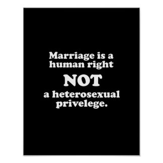 Marriage is a human right, not a heterosexual priv poster