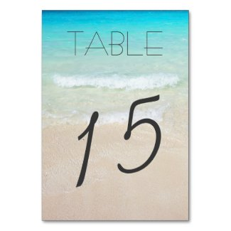 Married By the Sea Table Number Cards