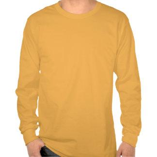 Marrón del vintage de la montaña rocosa tee shirts