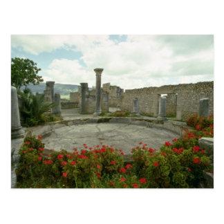 Marruecos blanco, flores romanas de la ruina postales