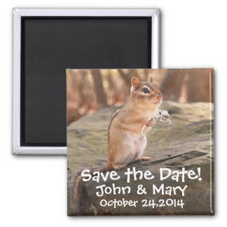 Marry me chipmunk Save the Date! Magnet