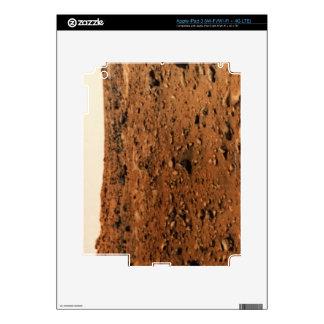 Mars 9 iPad 3 skins
