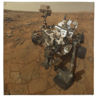 Mars Curiosity Self Portrait Cloth Napkin