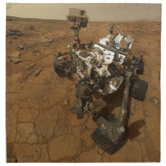Mars Curiosity Self Portrait Printed Napkin