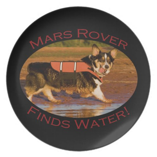 Mars Rover Party Plates