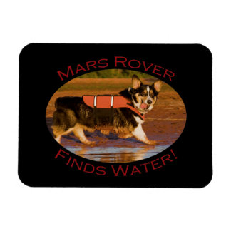 Mars Rover Magnets