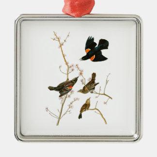 Marsh Blackbird John Audubon Birds of America Metal Ornament