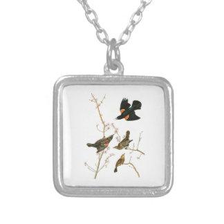 Marsh Blackbird John Audubon Birds of America Square Pendant Necklace