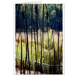 Marsh Card