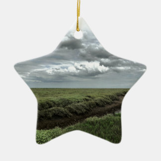 Marsh Ceramic Ornament