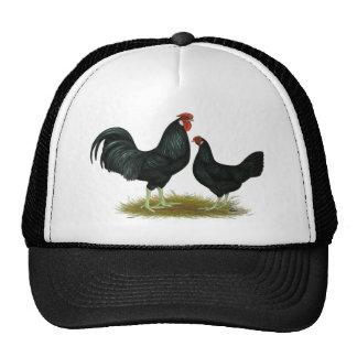 Marsh Daisy Chickens Trucker Hat