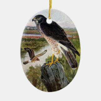 Marsh Hawk Ceramic Ornament