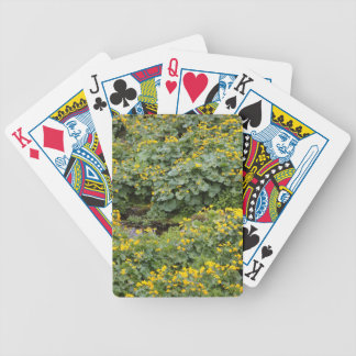 Marsh Marigolds Bicycle Playing Cards