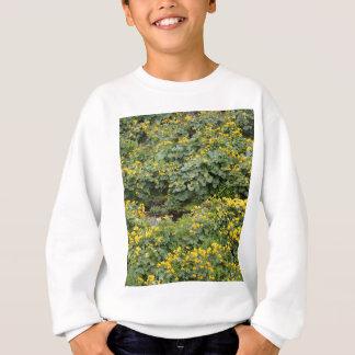 Marsh Marigolds Sweatshirt