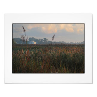 Marsh Morning on Winyah Bay Photo