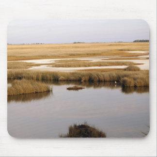 Marsh Mousepad