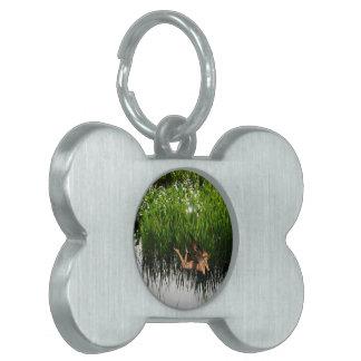 Marsh Pixie Pet ID Tag