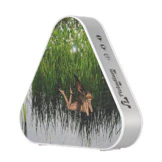 Marsh Pixie Speaker
