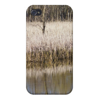 Marsh Reflection iPhone 4 Cases