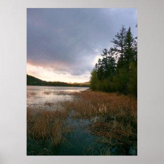 Marsh Wetlands Landscape Poster Print