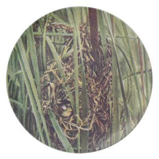 Marsh Wren Nest in Cattails Melamine Plate