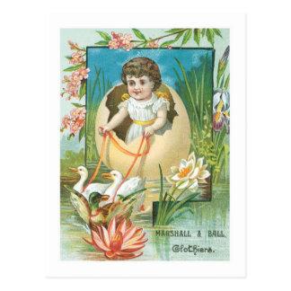 Marshall and Ball Clothiers Postcard