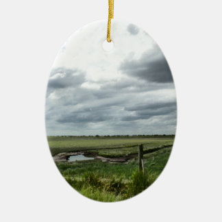 Marshes Ceramic Ornament