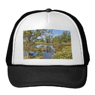 Marshes in the Bay of Arcachon Trucker Hat