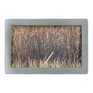 marshgrassescloseup.jpg belt buckle