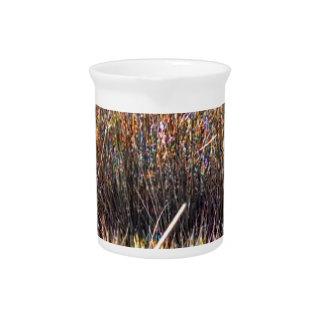 marshgrassescloseup.jpg jarra para bebida