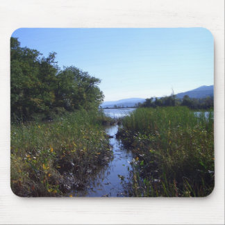 Marshland in New York Mouse Pads
