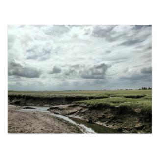 Marshland Postcard