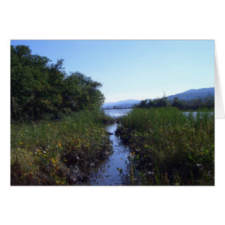 Marshland Setting Card