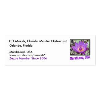 MarshLand, USA Contact Card Business Card Templates