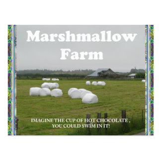 Marshmallow Farm. postcard