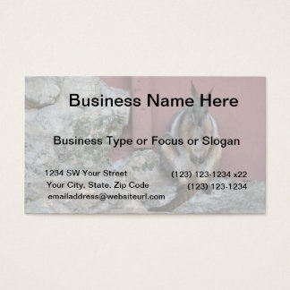 marsupial sitting against wall by rock business card