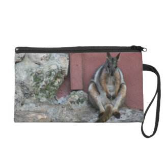 marsupial sitting against wall by rock wristlet