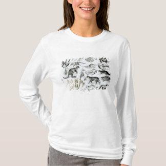 Marsupialia, Monetremata, Edentata T-Shirt