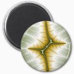 Mart - Fractal Magnet