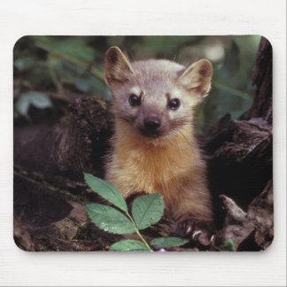 Marta de pino linda Mousepad Alfombrillas De Ratones