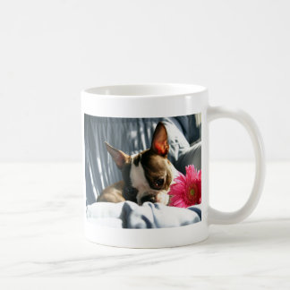 Martha and Gerber Daisy Mug
