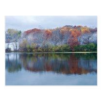 Marthaler Park Snowy Autumn Morning Postcard