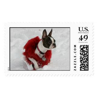 Martha's first snow stamp