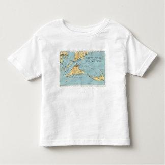 Martha's Vineyard & Nantucket Islands Toddler T-shirt