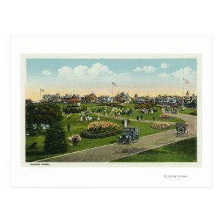 Martha's Vineyard, Ocean Park View Postcard